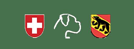 Boxerclub Ortsgruppe Bern